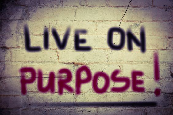 Ways To Find Your True Calling In Life And Discover its Purpose